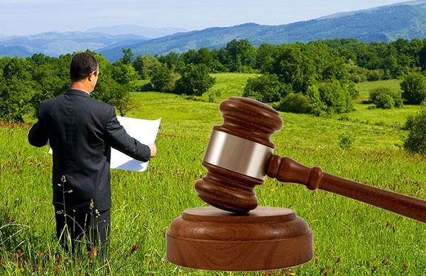 Получение аренды участка в случае выигрыша земельного аукциона