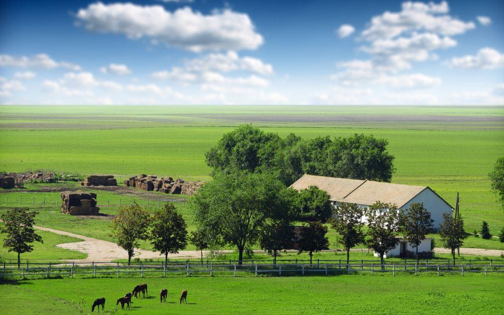 Постройки на землях сельскохозяйственного назначения