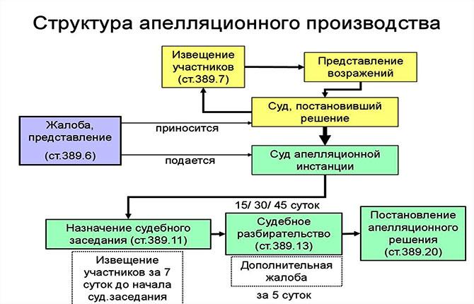 Структура апелляционного производства